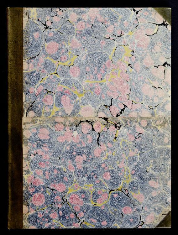 A new book of ornaments by Antonio Visentini